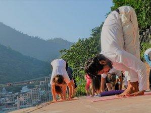 6 Days Budget Yoga Retreat in Rishikesh, India