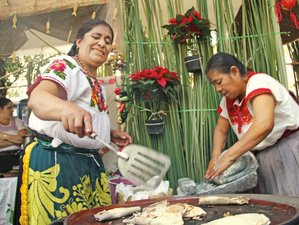 10 Day Culture and Culinary Holiday in Mexico City