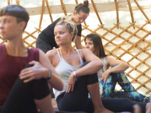 7 Days Nature Immersion and Yoga Retreat in Figuiero dos Vinhos, Portugal