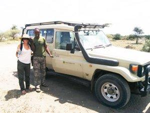6 Days Masai Mara, Lake Nakuru, and Amboseli Safari in Kenya