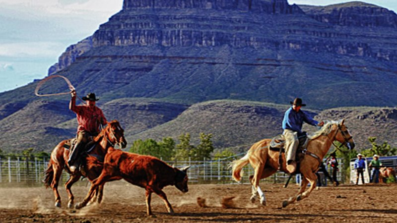 Image result for cowboys in grand canyon""