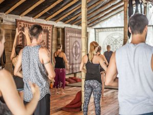 8 Days Life Changing Yoga Holiday in Ecuador