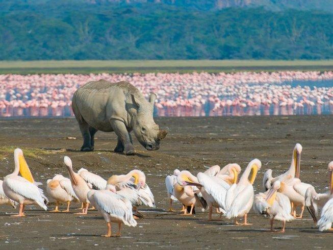 8 Days Great Kenya Safaris