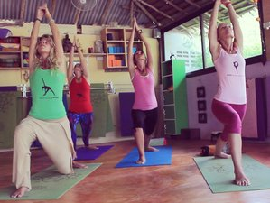 6 Days Yoga and Healing in Krabi, Thailand