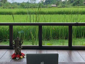 3 Day Online The Law of Manifestation Retreat with Workshops, Meditation and Yoga from Ubud, Bali