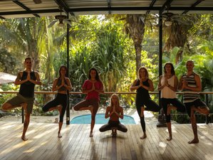 7 Day Believe Surf and Yoga Holiday in Santa Teresa, Puntarenas