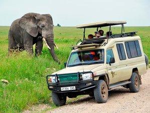 4 Days Great Migration Rectangle Safari in Tanzania