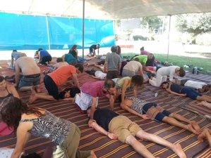 7 Days Zen Shiatsu and Meridian Yoga Retreat in Evia, Greece