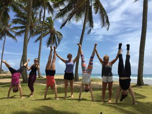 23 Days Yoga Teacher Training in Dominican Republic
