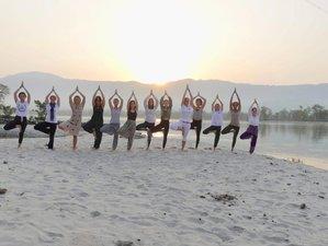 7 Day Sunrise Yoga Retreat and Ayurveda in Rishikesh