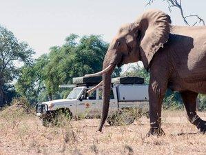 11 Days Self-Drive Safari South Africa and Botswana