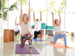 21 Days 200 Hour Ashtanga Yoga Teacher Training Goa, India