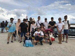 7 Day Unforgettable Surf Camp in Maafushi, Kaafu Atoll