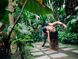 24 Days 200 Hour Multi Style Yoga Teacher Training in Rishikesh