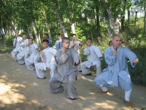 2 Weeks International Kung Fu Zen Summer Camp in China