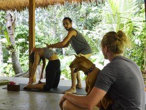 3 Day Online Cooking, Yoga, and Meditation Retreat