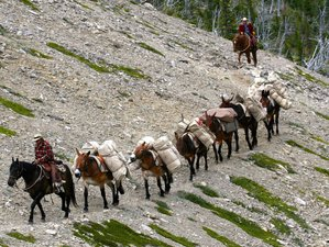 8 Days Hiking and Horseback Riding in Montana, USA