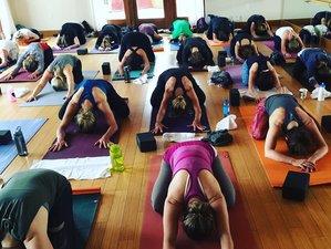 4 Days Luxury Yoga Retreat New Mexico, USA