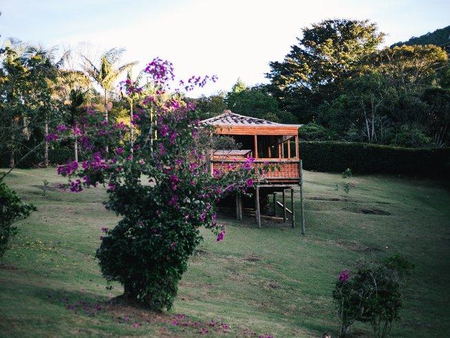 365 Days Meditation and Yoga Retreat in La Ceja, Colombia