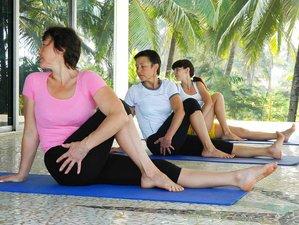 6 Days Juice Detox and Yoga Retreat in Goa, India