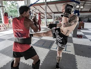 2 Weeks Muay Thai Training in Koh Tao, Thailand
