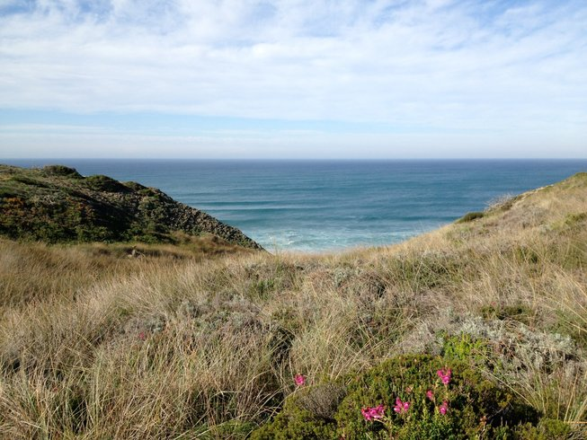 7 Days Summer Algarve Surf and Yoga Retreat Portugal