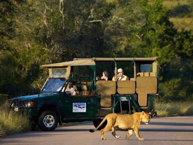 3 Days Buffalo Rock Kruger National Park Safaris