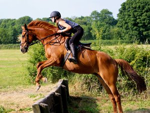 2 Days Cross Country Horse Riding Holiday in Tipperary, Ireland
