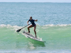 11 Day All Levels Surf Retreat Package in Jaco, Puntarenas