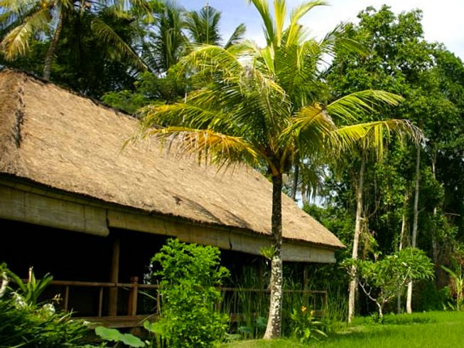 7 Days Bliss Out Yoga Retreat in Ubud, Bali