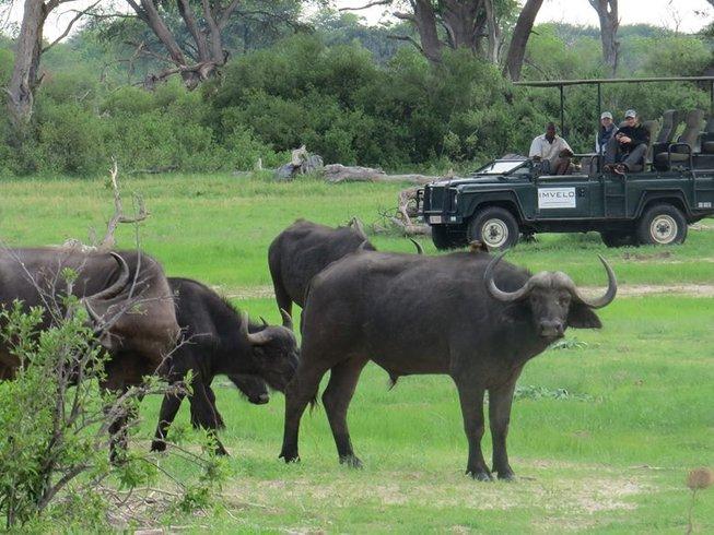 7 Days Camping Chobe National Park Safari
