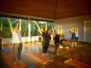 10 Days Calming Meditation and Yoga Retreat in Central Province, Sri Lanka