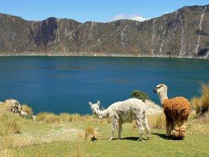 2 Day Cotopaxi and Quilotoa Wildlife Tour in Ecuador