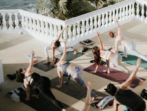 6 Days Escape Expectations and Find Joy in What is Yoga Retreat in Mexico November 10 - 15th 2019