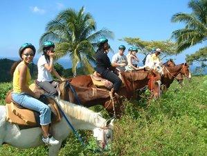 6 Days Beach Horseback Riding Holiday in Hanover, Jamaica