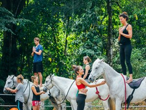 6 Days of Yoga with Horses Riding Holiday in Costa Rica