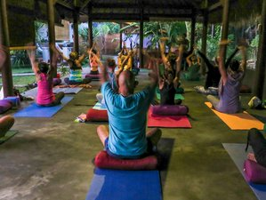 8 Days Nourished By The Elements Yoga Retreat In Amed Bali