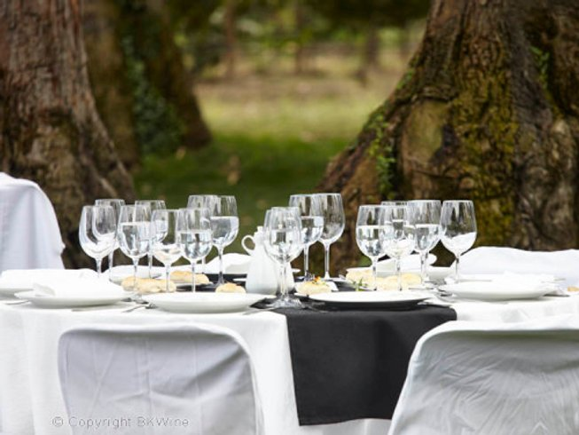 16 Days Wine Tours in Chile and Argentina