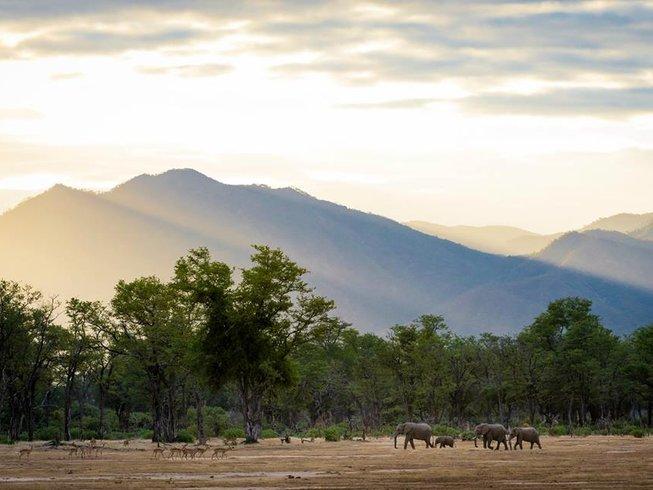 11 Days Honeymoon Safaris in South Africa