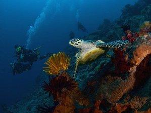 7 Tage Open Water PADI Scuba Tauchkurs auf Nusa Lembongan