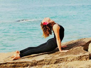 6 Day Yoga and Surf Holiday in Tamraght
