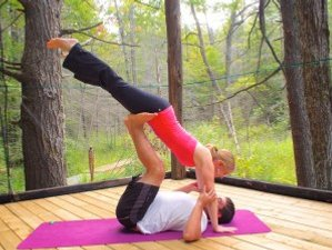 3 Days Yoga and Wine Retreat in Ontario, Canada