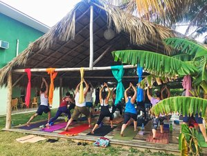 8 Days Organic Yoga Retreat in Cuba