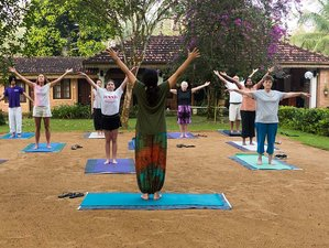 15 Days Natural Detox and Yoga Retreat in Kalutara, Sri Lanka