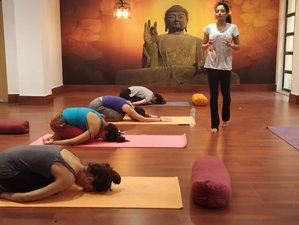 7 Days Relaxing Meditation and Yoga Holiday in Rishikesh, India