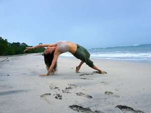 6-Daagse Detox en Yoga Retraite in Costa Rica