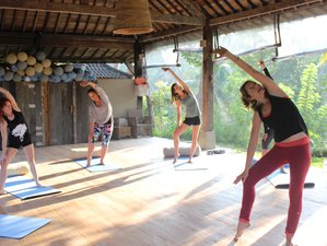 6 Day Life-Transforming Personalized Yoga and Raw Food Holiday in Ubud, Bali