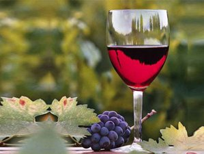 10 Days Wine and Culinary Tour in Argentina