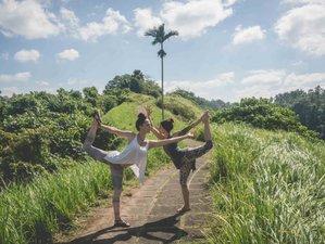 8 días de aventuras y retiro de yoga en Chiang Mai, Tailandia
