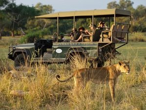 4 Days Luxury Safari in South Luangwa National Park, Zambia
